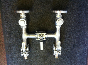 Stainless steel manifold for acid dosing system